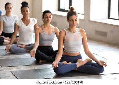 Group of young attractive people practicing yoga lesson doing Ardha Padmasana exercise, Half Lotus pose with mudra, working out, indoor full length, mixed race female students training at club, studio