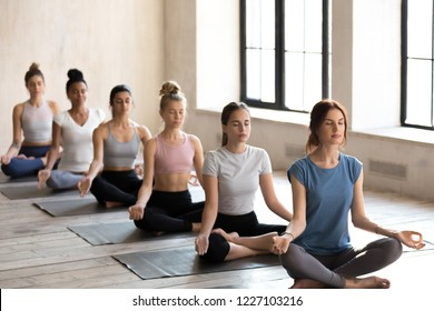 Group of young diverse attractive people practicing yoga, doing Easy Seat exercise, Sukhasana pose, sporty female students meditating at sport club, yoga studio. Well being, wellness concept