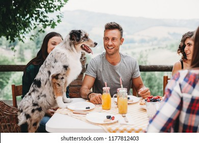 Group of young friends during breakfast in the countryside on a summer day. On the table biscuits, tart and fruit juices in glass bottles. A dog interacts with the millennials sitting at the table