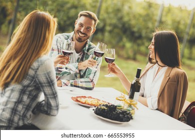 Group of young people drinking red wine in vineyard