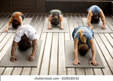 Group of young sporty afro american and caucasian people practicing yoga lesson stretching in Child exercise, Balasana pose, working out, indoor, studio. Healthy lifestyle concept