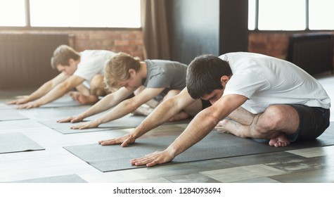 Group of young sporty people doing yoga, sitting in Utthita Sukhasana pose, vertebra therapy concept