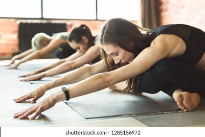 Group of young sporty people doing yoga, sitting in Utthita Sukhasana pose, back therapy concept