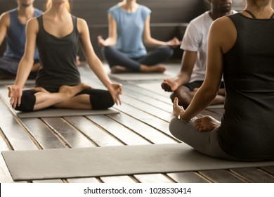 Group of young sporty people practicing yoga lesson with instructor, sitting in Sukhasana exercise, Easy Seat pose, working out, students training in sport club, studio close up, back view