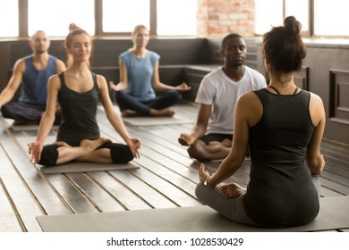 Group of young sporty people practicing yoga lesson with instructor, sitting in Sukhasana exercise, Easy Seat pose, working out, students training in sport club, studio, rear view