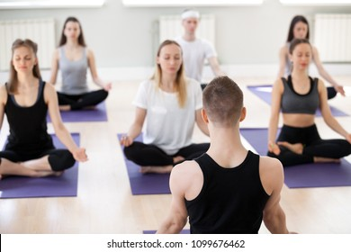 Group of young sporty people practicing yoga lesson with male instructor, doing Easy Seat exercise, Sukhasana pose, working out, indoor session, students training in sport club, teacher rear view