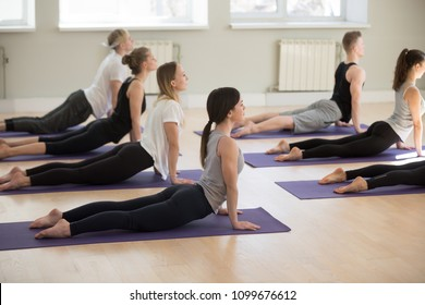 Group of young sporty people practicing yoga lesson, doing upward facing dog exercise, Urdhva mukha shvanasana pose, working out, indoor full length, yogi students training in sport club, studio