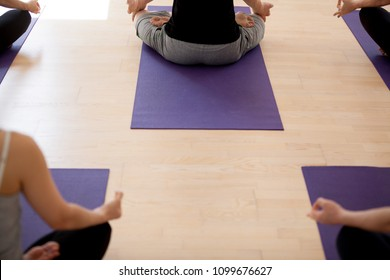 Group of young sporty people practicing yoga, doing Sukhasana exercise, Easy pose, students working out indoor in sport club, studio, close up rear top view. Mindfulness, wellness, wellbeing concept
