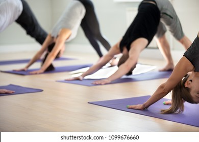 Group of young sporty people practicing yoga lesson, doing Down facing dog exercise, adho mukha svanasana pose, indoor close up, yogi students working out in sport club. Wellness, wellbeing concept