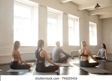 Group of young sporty people practicing yoga lesson with instructor, sitting in Padmasana, Lotus pose, working out, students training in club, loft studio, rear view. Wellness and wellbeing concept