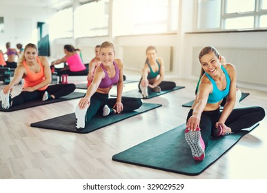 Group of young women in aerobics class at a gym doing stretching exercises to tone their muscles in a health and fitness concept