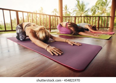 Group of young women doing stretching workout on fitness mat. Women at yoga class bending forward on their yoga mats. Fitness people doing child pose, Balasana.