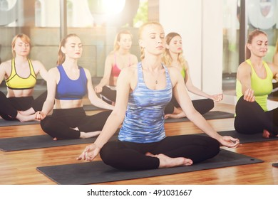 Group of young women in yoga class making exercises. Girls do meditation pose for relaxation. Healthy lifestyle in fitness club