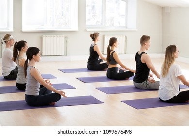 Group of young yogi people practicing yoga lesson in gym, doing Sukhasana exercise, Easy Seat pose, working out indoor full length, students training in sport club, studio. Wellness, wellbeing concept