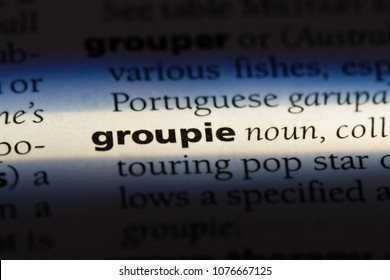 groupie groupie concept.