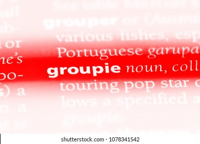 groupie word in a dictionary. groupie concept