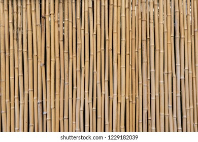 Grouping of vertical bamboo pattern forming a fence backdrop or background.