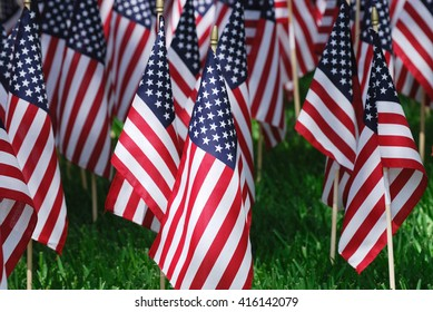 groups of USA flags on the meadow for memorial day
