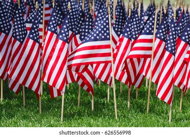 groups of USA flags on the meadow