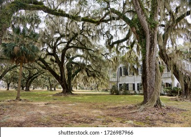 The Grove Plantation in ACE Basin National Wildlife Refuge in Hollywood in South Carolina USA