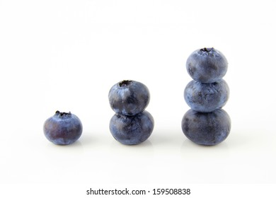 Growing up concept made of fresh blueberries isolated on white