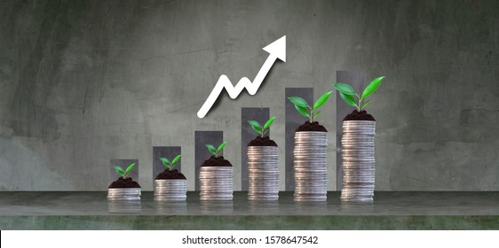 Growing crops in saving coins - investment concepts and interests Business growth - Shutterstock ID 1578647542