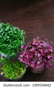 growing of microgreens in small pots