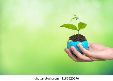 Growing plant on globe in hand , Environment conservation on green background
