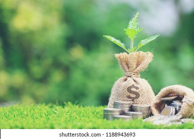 Growing plant on Money bag with stack of coins money on natural green background, Saving for prepare in future and Business investment concept
