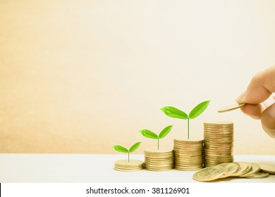 Growing plant on row of coin money for finance and banking concept