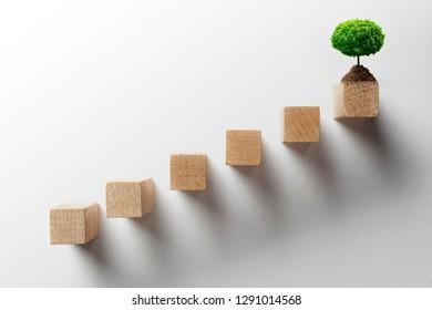 growth business concept. Plant