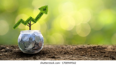 growth business. The tree grows into a shape, pointing up the concepts of financial business growth.