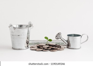 the growth of money. garden watering can