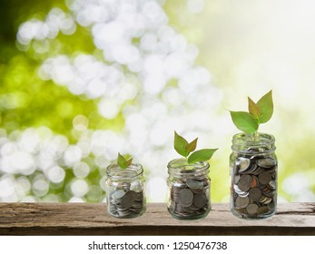 Growth of savings money concept