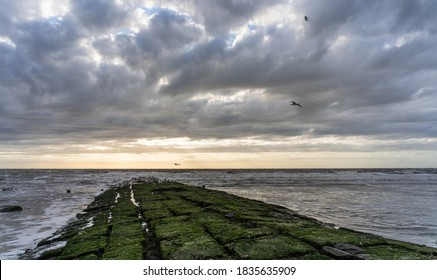 Groyne at the West Coast of the Island Norderney - Shutterstock ID 1835635909