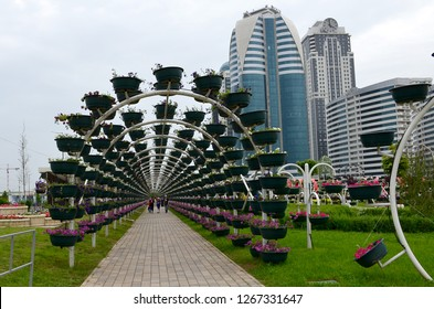 Grozny, Russia - May 8, 2018: Green archway in the Flower Park of the city of Grozny, Chechnya, Russia. Building of the complex Grozny City in the background. People walk in the park.