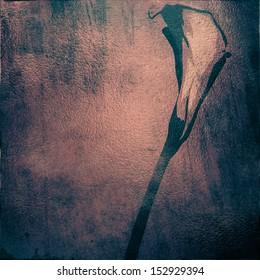 grunge background with flower
