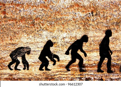 grunge background of human evolution