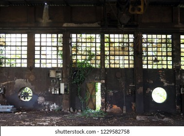 Grunge background. Interior of an abandoned factory with old machinery and ivy on walls, windows and on a half-open iron door