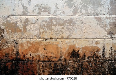 Grunge Background - mold/mildew and peeling pain on a cinder block wall