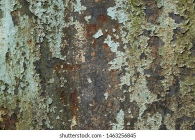 Grunge background, peeling paint on rusty metal