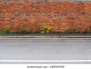 Grunge brick wall and a worn sidewalk with weeds. Asphalt road in front.  Background for copy space