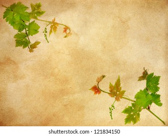 grunge  floral background with space for text or image. flower paper textures.