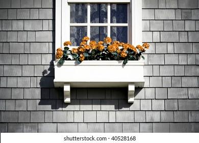 Grunge Flower Box