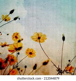 Grunge image of flower with filtered image. Vintage background.