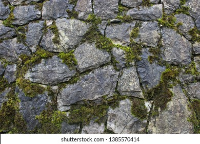 Grunge rock work pattern background with cracks and moss between them. Close up of wet stone wall texture.