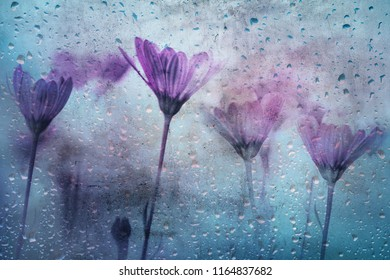 Grunge textured pink red colored flowers with rain droplets background.