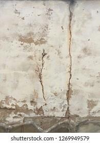 grunge wall background texture brownish
