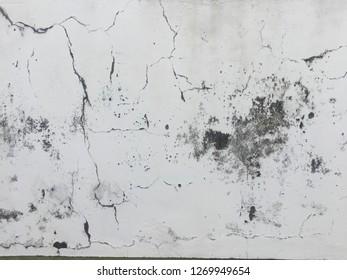 grunge wall background texture white