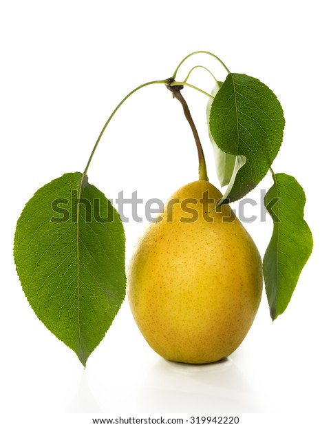 Grusha-juicy and fragrant crop, on the white isolated background.